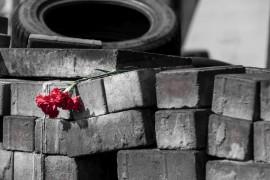 Maidán 2014. La posrevolución ucraniana en 30 imágenes